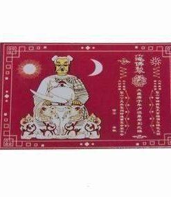Magnet pentru anihilarea Tai Sui in 2021
