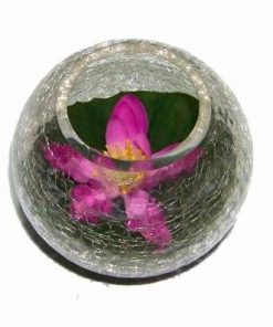 Bol din sticla cu lotus mov