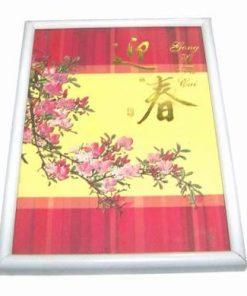 Tablou Feng Shui cu floare de prun si ideograme de bun augur