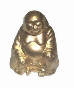 Buddha al bunastarii