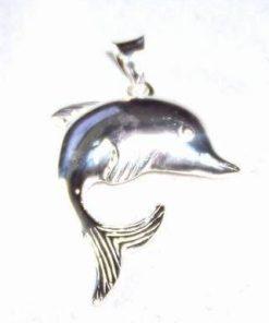 Pandantiv din argint cu delfinul dragostei - model deosebit!