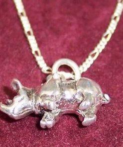 Rinocer din argint - remediu de protectie