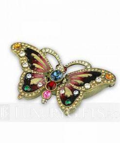 Casetuta cu Fluturele Evolutiei Spirituale
