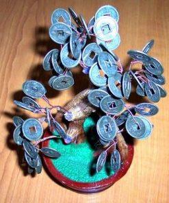 Copacel cu monede - remediu Feng Shui