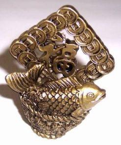 Crapul auriu cu vasul abundentei si ideograma norocului