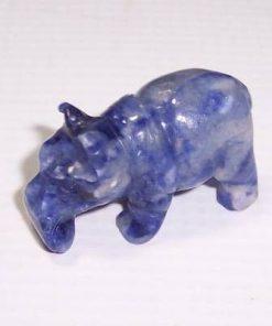 Rinocerul norocos