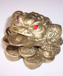Broasca raioasa cu trei picioare - remediu Feng Shui