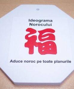 Tablou cu Bagua si Ideograma Norocului