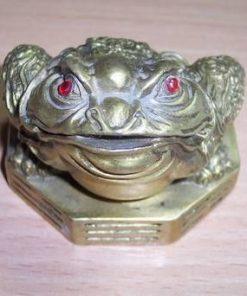 Broasca raioasa pe Bagua - remediu din metal