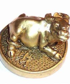 Bivolul auriu pe moneda - remediu Feng Shui pentru copii