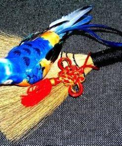 Maturica fermecata cu papagalul dragostei portocaliu