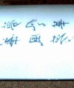 Aplica Feng Shui cu simboluri de bun augur - unicat!