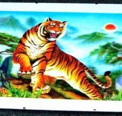 Tablou Feng Shui 3D, cu Tigrul Succesului - model deosebit!