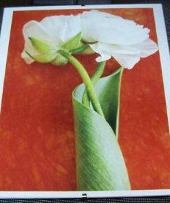 Tablou Feng Shui cu trandafrii dragostei - unicat!