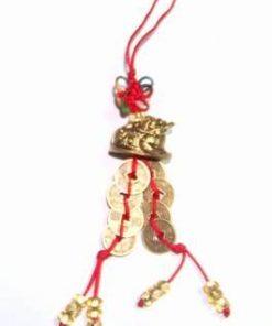 Canaf Feng Shui cu broasca raioasa, siraguri de monede