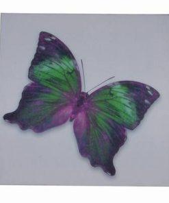 Tablou Feng Shui cu Fluturele Evolutiei Spirituale