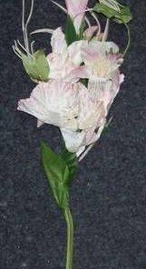 Buchet - 5 fire cu Florile Succesului, Dragostei, Norocului