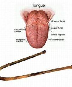 Dispozitiv din cupru pentru curatarea toxinelor de pe limba