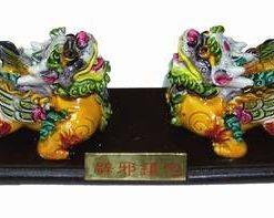 Leii Fujian de protectie si forta financiara
