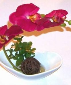 Decor Feng Shui cu orhidee pentru baie