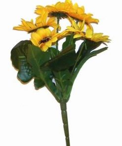 Buchet cu 5 flori - Floarea Soarelui