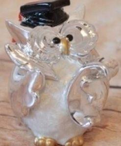 Bufnita argintie - remediu Feng Shui pentru oratori