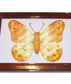 Tablou 3D Feng Shui cu Fluturele succesului profesional