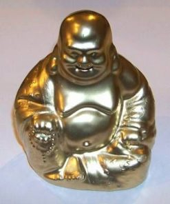 Statuia lui Buddha - remediu pentru procese