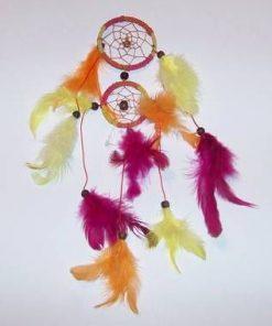 Prinzator de vise - roz, galben, portocaliu