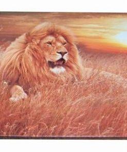 Tablou cu Leul Succesului