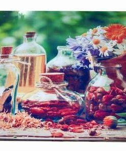 Tablou Feng Shui cu uleiuri si plante