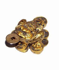 Broasca raioasa pe pepite si monede