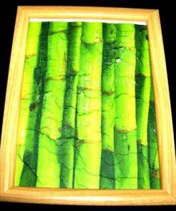 Tablou Feng Shui cu bambus